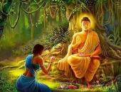 https://xahoi.com.vn/3-dieu-mang-lai-phuc-am-cho-phu-nu-vien-man-tron-doi-359546.html