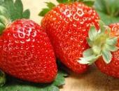 https://xahoi.com.vn/6-loai-trai-cay-giau-vitamin-c-rat-tot-cho-me-bau-trong-mua-dong-366896.html