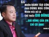 https://xahoi.com.vn/mo-bat-shark-tank-thuan-buom-xuoi-gio-coolmate-duoc-shark-binh-rot-von-nhanh-ky-luc-373924.html