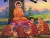 https://xahoi.com.vn/doi-nguoi-suong-hay-kho-dang-cay-hay-ngot-bui-deu-goi-gon-vao-dieu-nay-377283.html