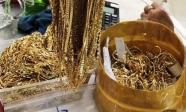 Siêu trộm dưới vỏ bọc đại gia: 300 cây vàng bốc hơi và hành trình theo dấu vết bí ẩn