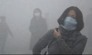 """Phát hiện mới: Ô nhiễm không khí là """"thủ phạm âm thầm"""" gây ra sẩy thai ở phụ nữ"""