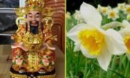 Buổi sáng âm thầm đặt 3 loại hoa này lên bàn thờ Thần Tài, gia chủ ngồi rung đùi đếm tiền mỏi tay