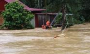 Hơn 30 người thương vong do bão số 5