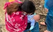 Xót xa em bé 10 ngày tuổi cùng bố mẹ vượt 1400km về Nghệ An tránh dịch Covid-19
