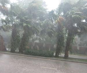 Thời tiết dịp 30/4 và 1/5: Cả nước có mưa dông vào chiều tối