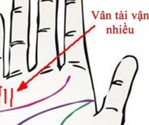 Nếu có vân bàn tay này... bạn là người giỏi kiếm tiền, công thành danh toại