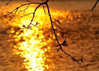Mê hoặc chiều dát vàng Hồ Gươm