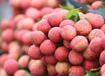 5 loại hoa quả theo mùa để giết sâu bọ trong ngày Tết Đoan Ngọ