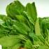 Những loại rau xanh nhiều canxi hơn sữa