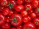 Người bị bệnh gì nên kiêng ăn cà chua?