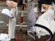 Cô gái mặc áo dài trắng, đeo cánh thiên thần nằm trên hè phố Hà Nội gây tò mò