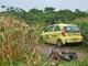Taxi gây tai nạn liên hoàn, thai phụ sắp sinh tử nạn