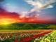 10 điểm đến nhiều màu sắc nhất Trái Đất
