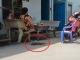 Con đâm chết cha dượng ở TP. Hồ Chí Minh
