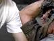 Bị tai nạn tôn cứa cổ, có thể sống nếu được sơ cứu đúng cách