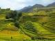Mùa thu đi du lịch ở chỗ nào Việt Nam là tuyệt vời nhất?
