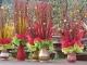 TP HCM: Rực rỡ sắc màu chợ hoa Tết