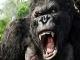 'Kong' phải kiếm được bao nhiêu để thoát bờ vực lỗ vốn?