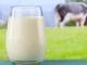 Những tác dụng thần kỳ của sữa ít người biết