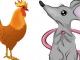 Tử vi thứ Sáu ngày 25/9/2020 của 12 con giáp: Tý gặp rắc rối, Dậu chú ý sức khỏe