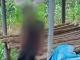 Yên Bái: Thanh niên 21 tuổi treo cổ tự tử vì biết bị HIV