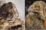 Phát hiện xác ướp sư tử 12.000 tuổi