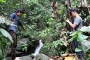 Chó nghiệp vụ truy tìm nghi can giết 4 người ở Lào Cai