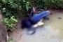 Phát hiện người đàn ông tử vong dưới cống, thi thể đè lên chiếc xe máy