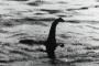 Bằng chứng kỷ lục nghi xuất hiện 'quái vật hồ Loch Ness': Bí ẩn hơn 200 năm được giải mã?