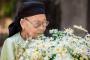 Bộ ảnh cụ bà 99 tuổi bên đoá cúc hoạ mi: Nhìn cụ cười, con cháu thấy hạnh phúc!