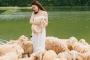 Hang Múa, đồng cừu Gia Viễn lọt top điểm đến nên đi Tết dương lịch 2021