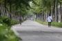 Bắt Tổng giám đốc Công ty Công viên cây xanh Hà Nội và 6 đồng phạm trong vụ trồng 1 triệu cây xanh