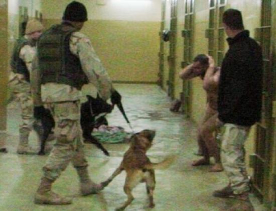 Dùng chó để tra tấn tù nhân.