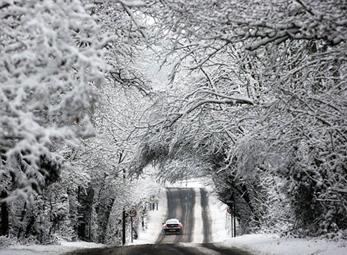 Mưa tuyết bao phủ khắp xứ sở sương mù