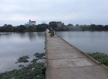 Cây cầu