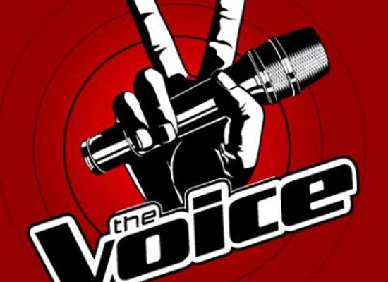 BTC The Voice phiên bản Việt đã dùng đến không ít