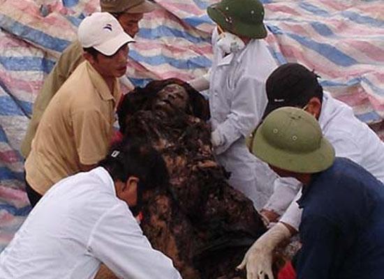 Khai quật mộ xác ướp
