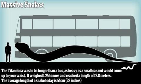 Rắn khổng lồ lớn bằng cả chiếc xe buýt sẽ xuất hiện đầy rẫy?   Rắn khổng lồ, Rắn khổng lồ trở lại, Nóng lên toàn cầu, Khoa học, Đột biến, sinh vật