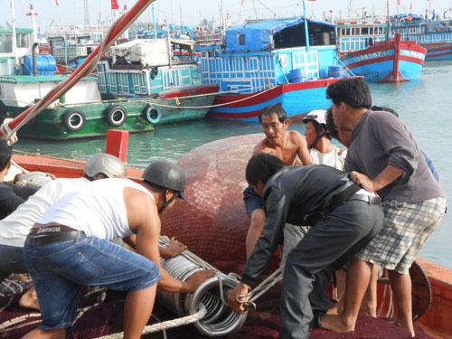 NÓNG 24h: 1200 người Philippines chết vì bão Haiyan | Siêu bão, Bão số 14, Án oan ở Bắc Giang, Trộm cổ vật ở lăng Tự Đức, Nóng 24h, Huân chương Dũng cảm