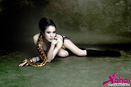 have logo dieplamanh05jpg1360903476 Vietnamese Singer Diệp Lâm Anh Welcomes The New Year Of Snake