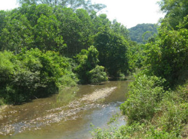 Dòng suối chảy ngược hàng trăm năm gắn bó đời sống người địa phương
