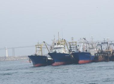 Đại gia xin vay ngàn tỷ mua tàu cá nát: Xin ưu đãi quá đà?