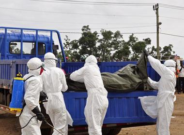 Dịch Ebola: Thế giới phải mất 6 tháng để kiểm soát dịch, 1.145 người đã chết