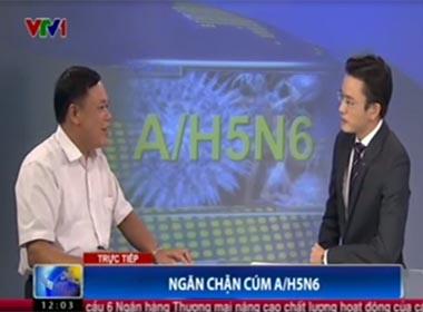 Video xuất hiện cúm A/H5N6, chủng virus nguy hiểm có độc lực cao