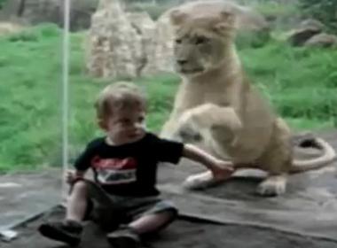 Video khi trẻ em đi công viên!