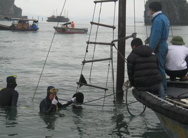 Tàu chở 12 du khách nước ngoài bị đắm trên vịnh Hạ Long