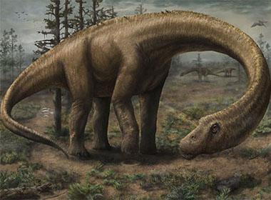 Loài khủng long lớn hơn cả chiếc máy bay Boeing 737 được phát hiện
