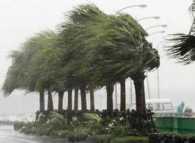 Dự báo thời tiết hôm nay (16/9): Bắc Bộ gió mạnh dần, chuẩn bị đón bão
