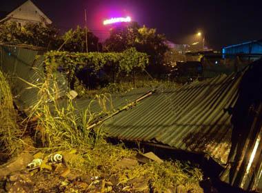 Bão số 3 quật ngã hàng loạt cây xanh tại Quảng Ninh